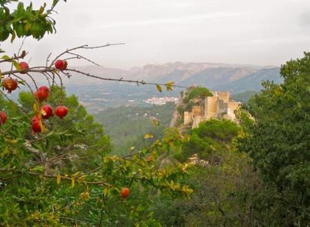 Desde lo alto del Castillo de Xàtiva