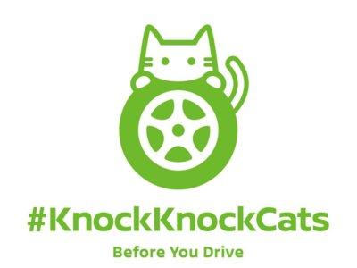 Nissan inicia una campaña en Japón…para salvar gatitos callejeros
