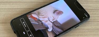 Carpeta privada de Google Fotos: qué es y cómo configurarla