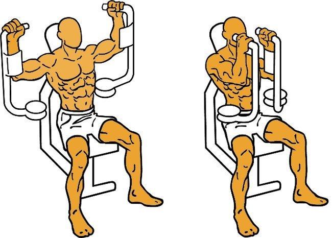 Resultado de imagen de ejercicio contractora