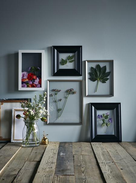Ikea Plantas Ph144999