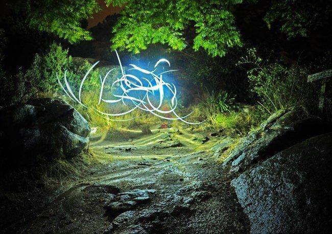 Bosque pintado con luz