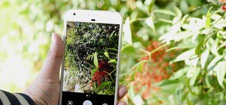 Modifican la Cámara de Google para traer el modo HDR+ de los Pixel a más dispositivos