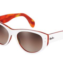 Foto 7 de 17 de la galería las-gafas-de-ray-ban-para-la-primavera-verano-2011 en Trendencias Hombre
