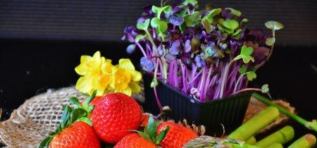 La guía definitiva de los productos de primavera. Recomendaciones y muchas recetas en las que usarlos