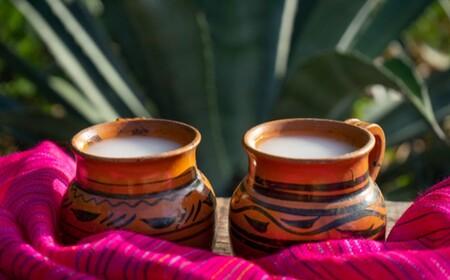 Pulque Fest 2021 en CDMX: cómo, dónde y cuándo se llevará a cabo el gran festival de pulque en México