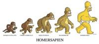 En búsqueda del origen de la capacidad de evolución: ¿es necesaria la competencia para sobrevivir?