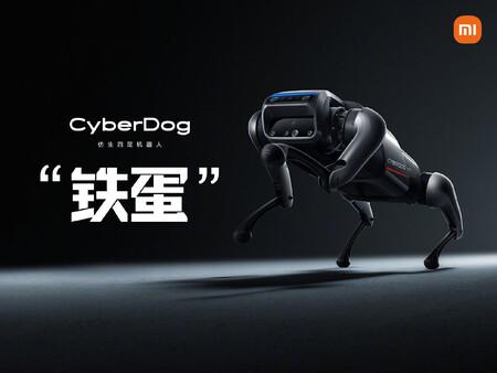 Xiaomi saca a pasear su CyberDog por más de 100 Mi Stores en 27 ciudades diferentes