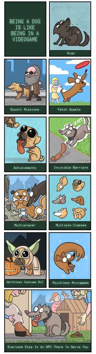 Ser un perro es como estar en un videojuego