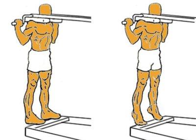 Guía para principiantes (LV): Elevación de talones, de pie, en máquina