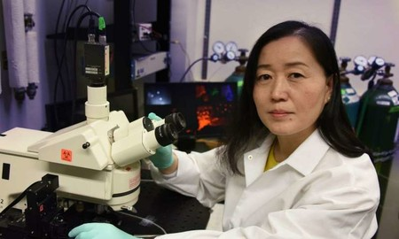 Se ha logrado curar la depresión en ratones macho al activar el gen que ayuda a excitar las neuronas