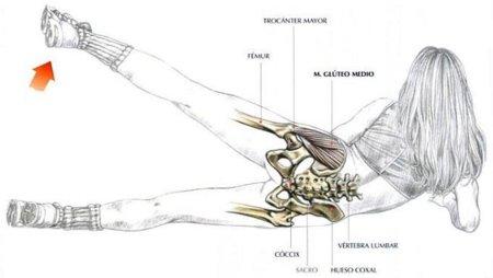 Tres formas de elevar la pierna para un trabajo integral del glúteo medio y menor