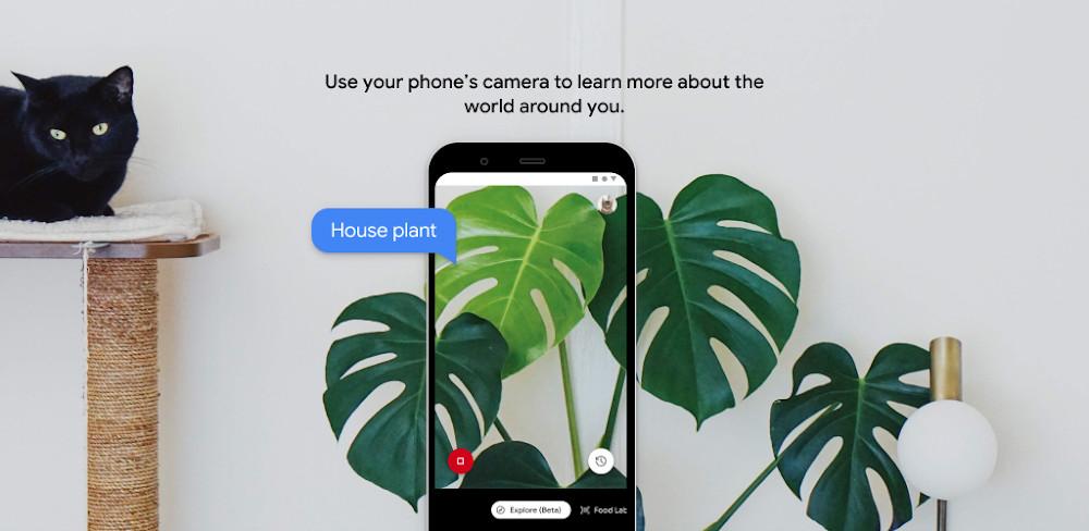 Google Lookout: la aplicación que apoya a las personas con inconvenientes de visión viene en español