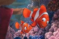 La verdadera familia de Nemo: poliandria y transexualidad
