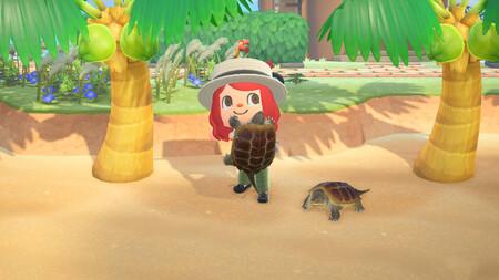 Los insectos, peces y criaturas marinas de Animal Crossing: New Horizons que desaparecen en octubre