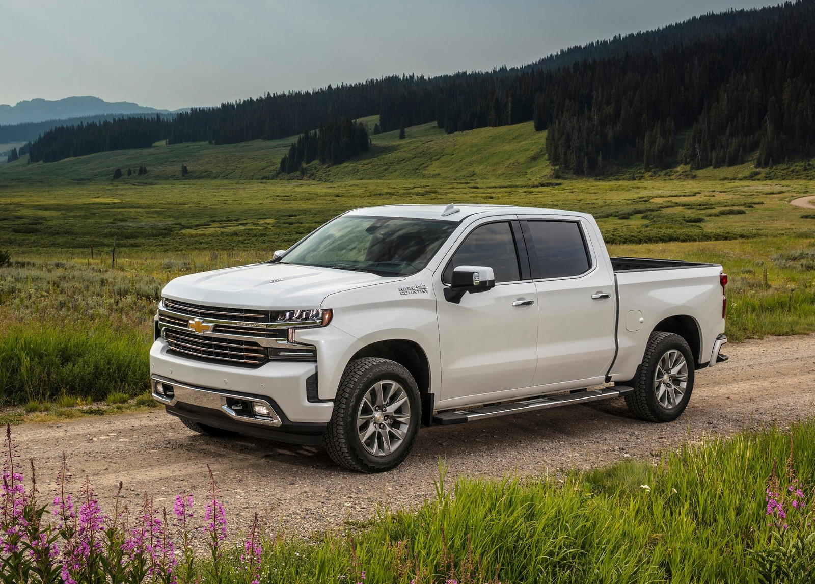 Foto de Chevrolet Cheyenne 2019 (1/14)