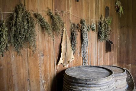 Cómo secar hierbas aromáticas en casa