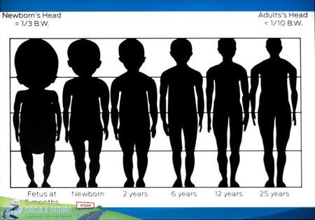 Cuadro de proporciones humanas
