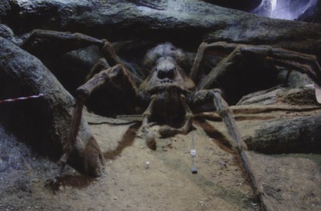 Harry Potter Tarantula