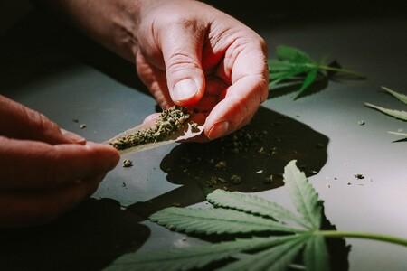 Diputados aprueban el consumo y comercio de marihuana en México: se permitirán hasta ocho plantas en casa y portación de 28 gramos