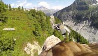 [Vídeo] Volando a lomos de un águila