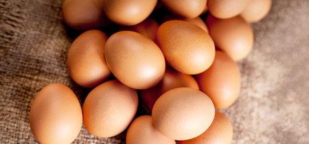 Cinco razones para comer más huevo