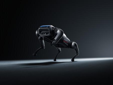 Cyberdog 03
