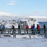Hacia un turismo más elitista: el plan de Islandia para filtrar a las rentas más altas