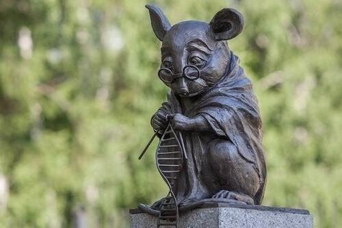 La entrañable escultura de un ratón tejiendo una cadena de ADN que podemos encontrar en Rusia y que nos recuerda su importancia