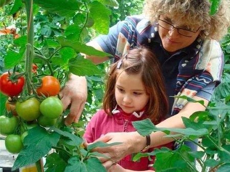 Visitas educativas al invernadero