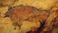 Reabre al público la Cueva de Altamira