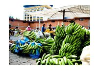 ¿Qué son las microfinanzas?