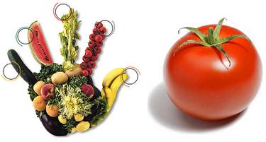El tomate en la alimentación infantil
