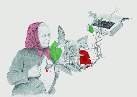 Ilustracion Almaciga