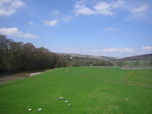 Foto de Verde Yorkshire (1/8)