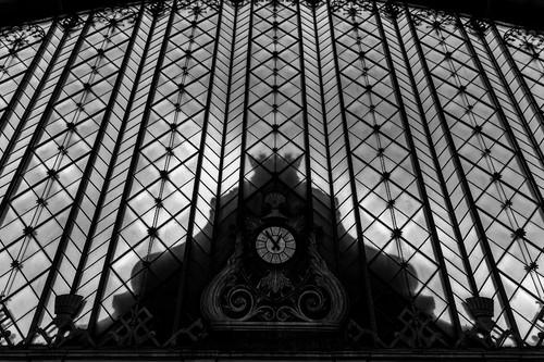 Dedicar tiempo a la fotografía