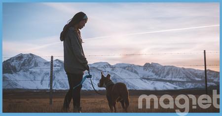 Por qué la muerte de tu perro te duele más que la de tu mejor amigo