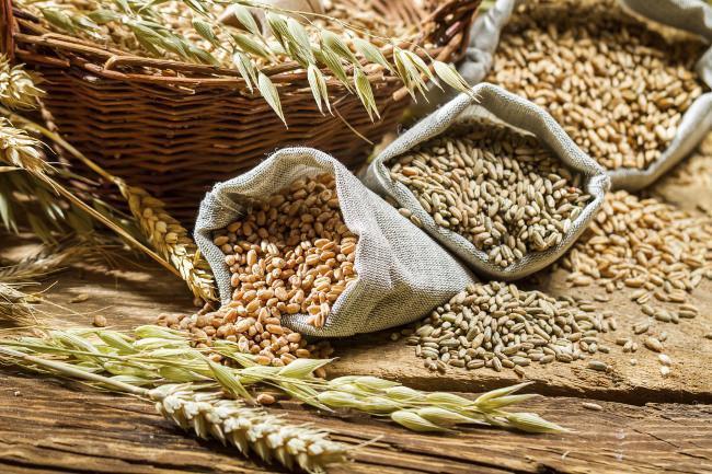 Resultado de imagen de cereales