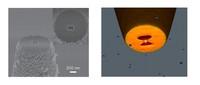 Crean unas nano-pinzas capaces de capturar virus