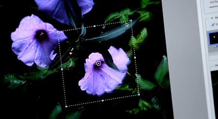 Shake Reduction: Por fin llegará a Photoshop el filtro que enfoca las fotografías movidas