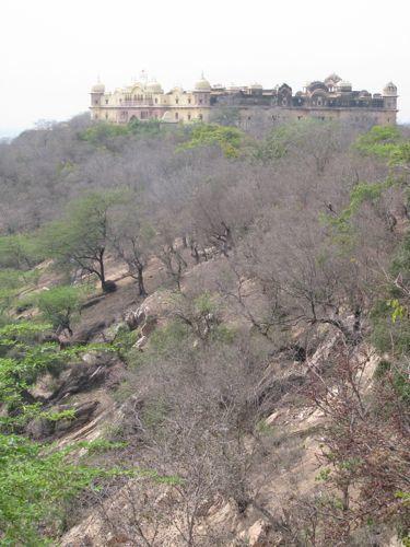 Foto de Caminos de la India: Barsana (5/10)