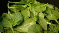 Época de espinacas: una buena opción para obtener antioxidantes