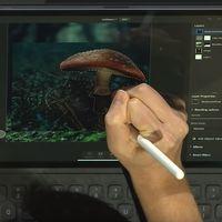 Photoshop para iPad se actualiza y añade la función de 'Selección de sujeto'