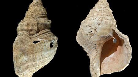 Ya podemos escuchar sonaba el instrumento de viento más antiguo: 18.000 años