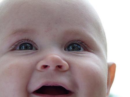 Calendario del bebé: seis meses