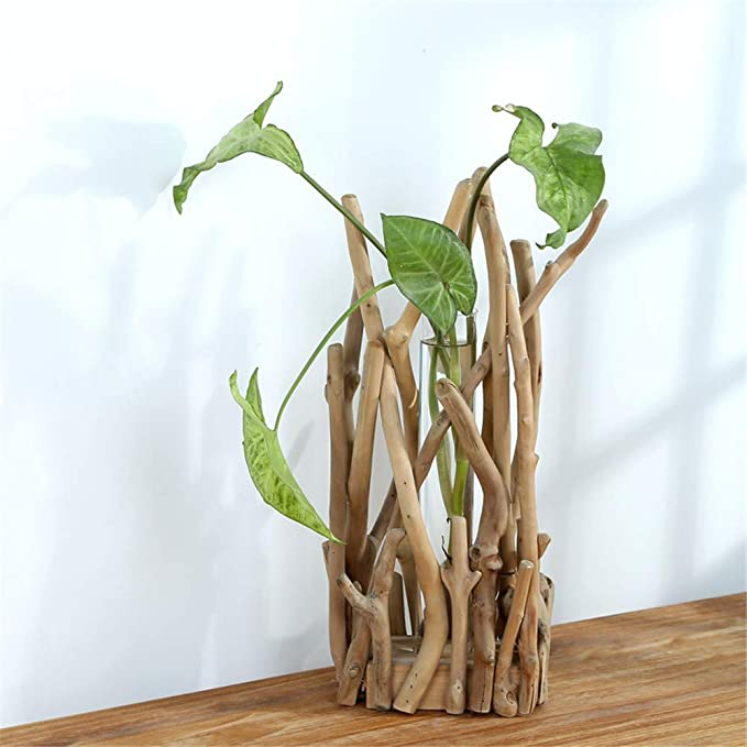 belupai Florero de cristal con forma de tubo para plantas hidropónicas, contenedor para decoración del hogar con estante de madera (grande)