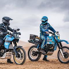 Foto 11 de 12 de la galería yamaha-xtz700-tenere-rally-edition-2020 en Motorpasion Moto