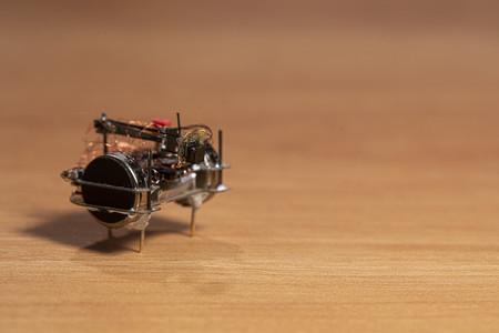 Beetlecameraweb004