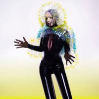 """Vulnicura: el álbum de Björk que se adelanto a """"su tiempo"""""""