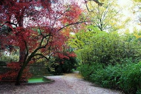 Los parques que podemos recorrer con la familia por Madrid en otoño